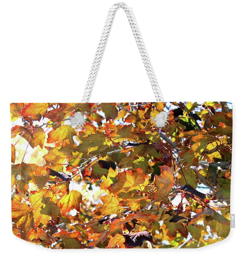 Leaves Weekender Tote Bag featuring the mixed media All The Leaves Are Red And Orange Fall Foliage With Sunshine by Design Turnpike