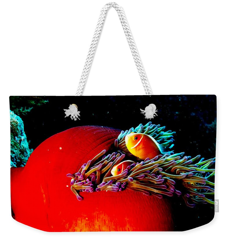 Anemone Weekender Tote Bag featuring the photograph All Tucked In by Mumbles and Grumbles