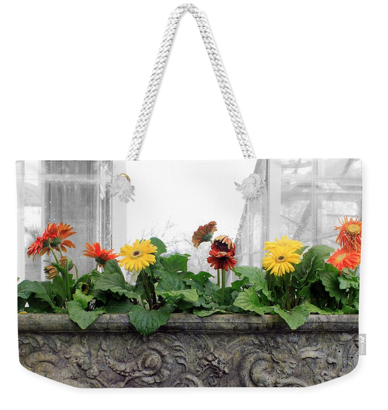 Flower Weekender Tote Bag featuring the photograph Allen Garden - Toronto by Munir Alawi