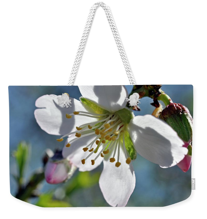 Almonds In Lachish 1 Weekender Tote Bag featuring the photograph Almonds In Lachish 1 by Dubi Roman