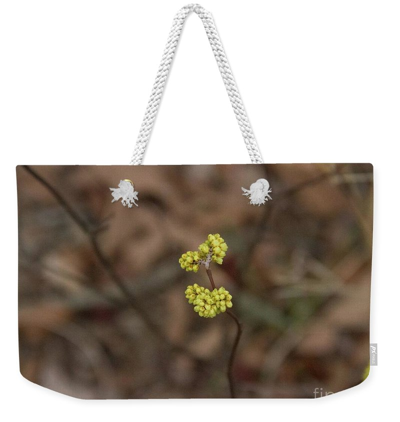 Yellow Flower Weekender Tote Bag featuring the photograph Almost Spring by Rebecca Pavelka