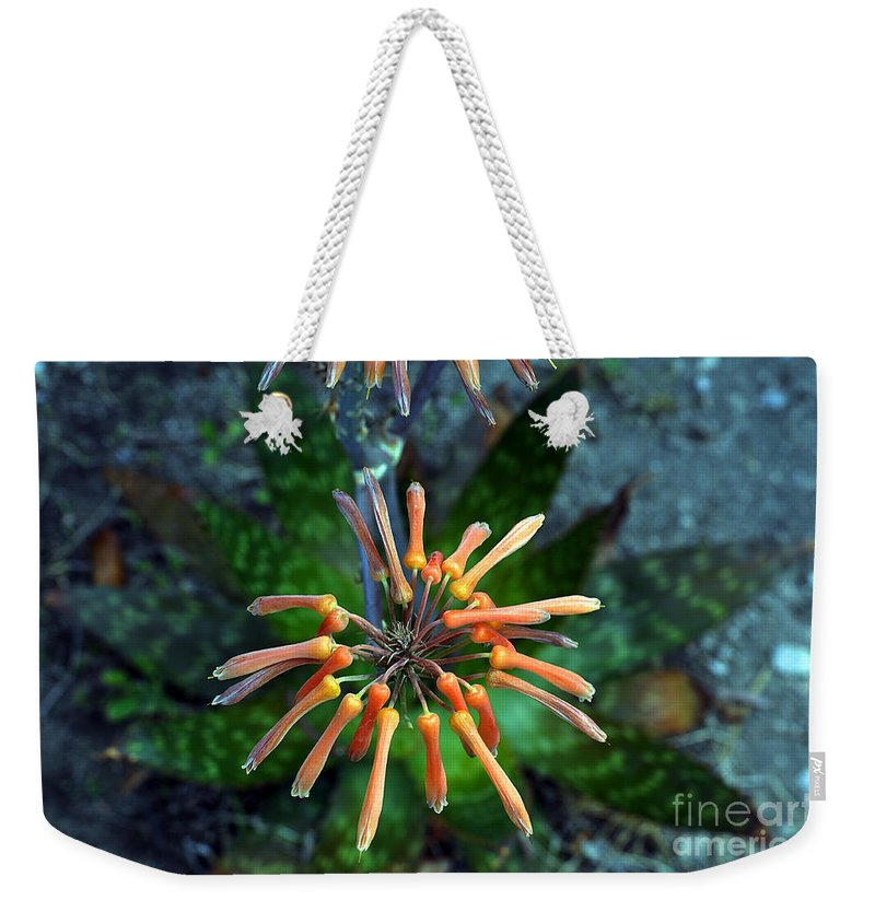 Clay Weekender Tote Bag featuring the photograph Aloe Vera by Clayton Bruster