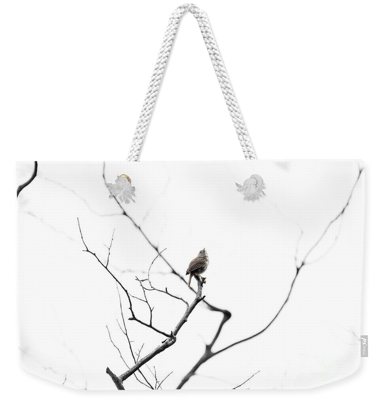 Wren Weekender Tote Bag featuring the photograph Alone by Carl Saathoff
