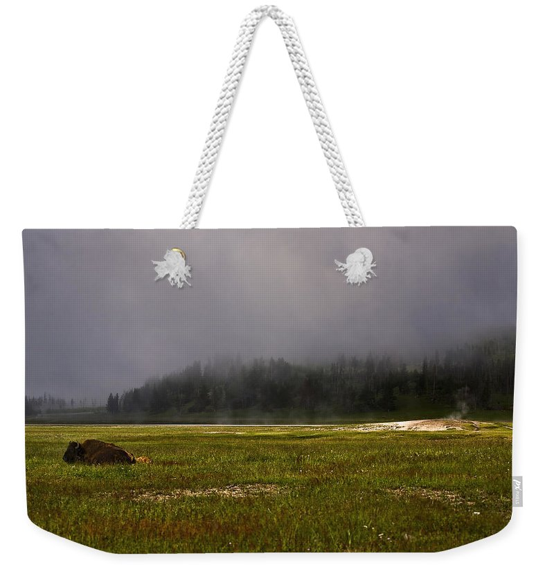 Nature Weekender Tote Bag featuring the photograph Alone In Fog by John K Sampson