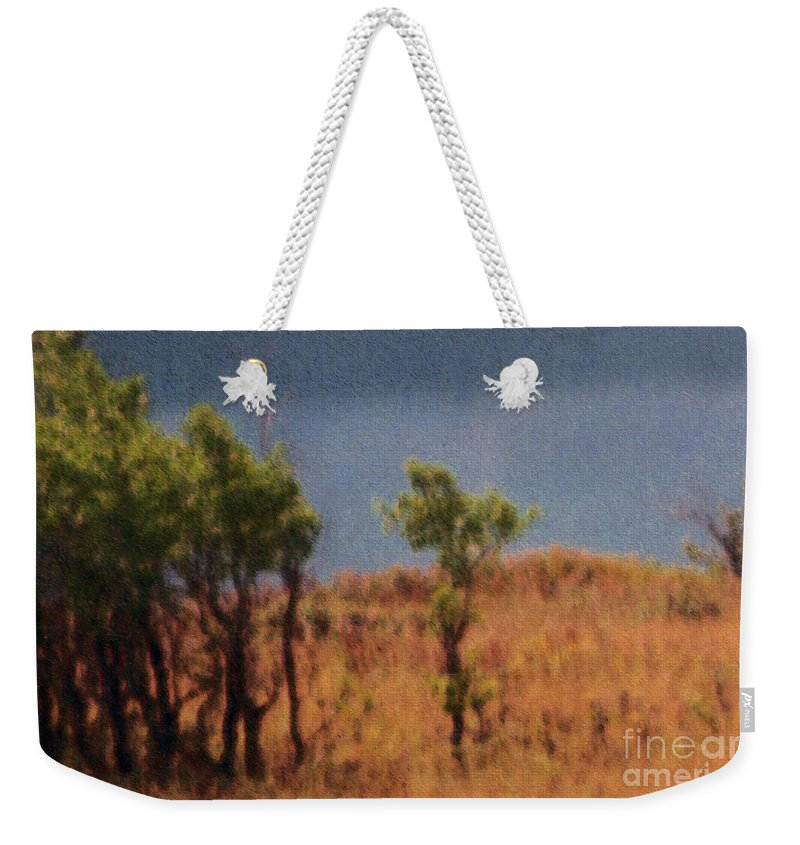Field Weekender Tote Bag featuring the digital art Along The Lake by Richard Rizzo
