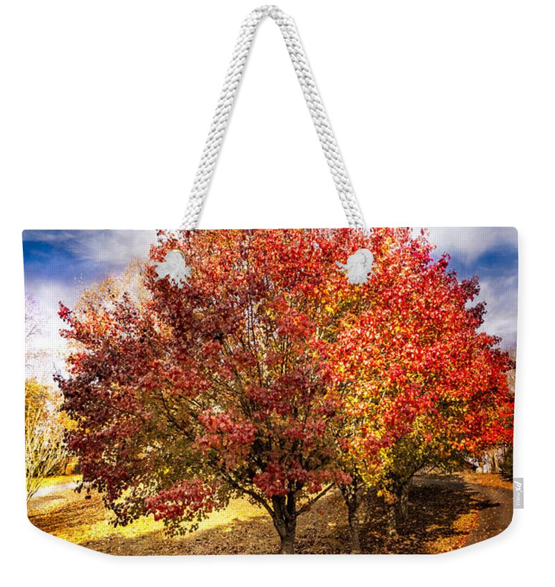 Appalachia Weekender Tote Bag featuring the photograph Along The Lane by Debra and Dave Vanderlaan