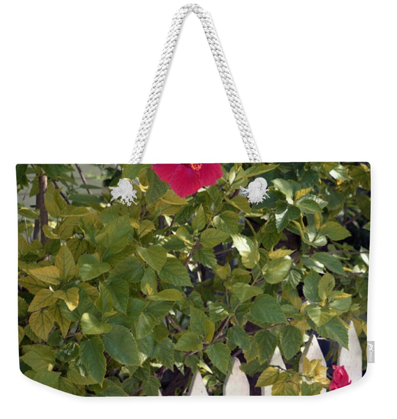 Azelea Weekender Tote Bag featuring the photograph Along The Picket Fence by Richard Rizzo
