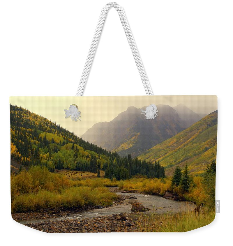 Colorado Weekender Tote Bag featuring the photograph Alpine Loop Fall by Marty Koch