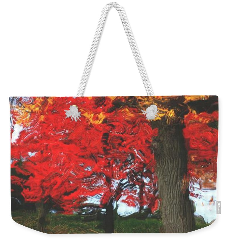 Abstract Digital Photo Weekender Tote Bag featuring the digital art Altered State In The Park by David Lane