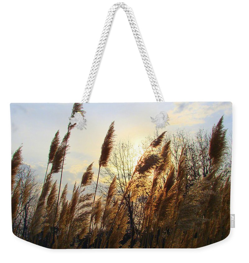 Pampasgrass Weekender Tote Bag featuring the photograph Amber Waves Of Pampas Grass by J R Seymour