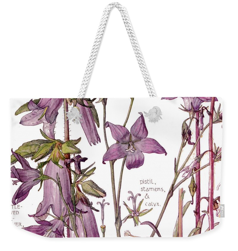 Flowers Weekender Tote Bag featuring the painting Ambrosia Vii by Mindy Sommers