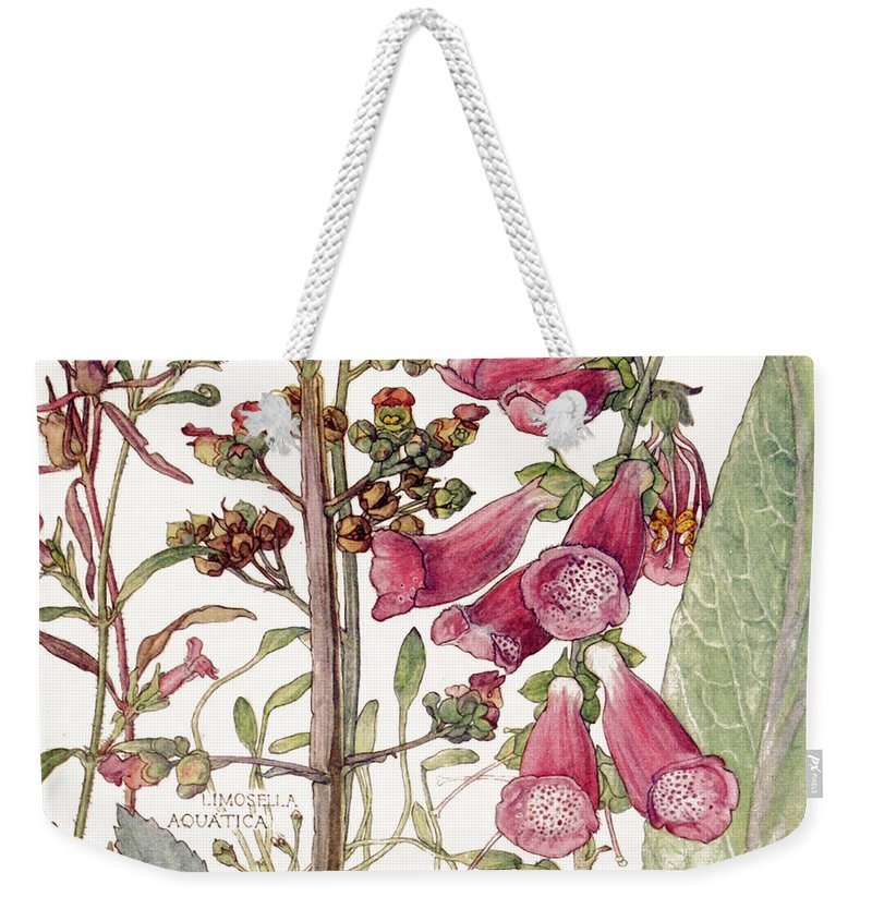 Flowers Weekender Tote Bag featuring the painting Ambrosia X by Mindy Sommers
