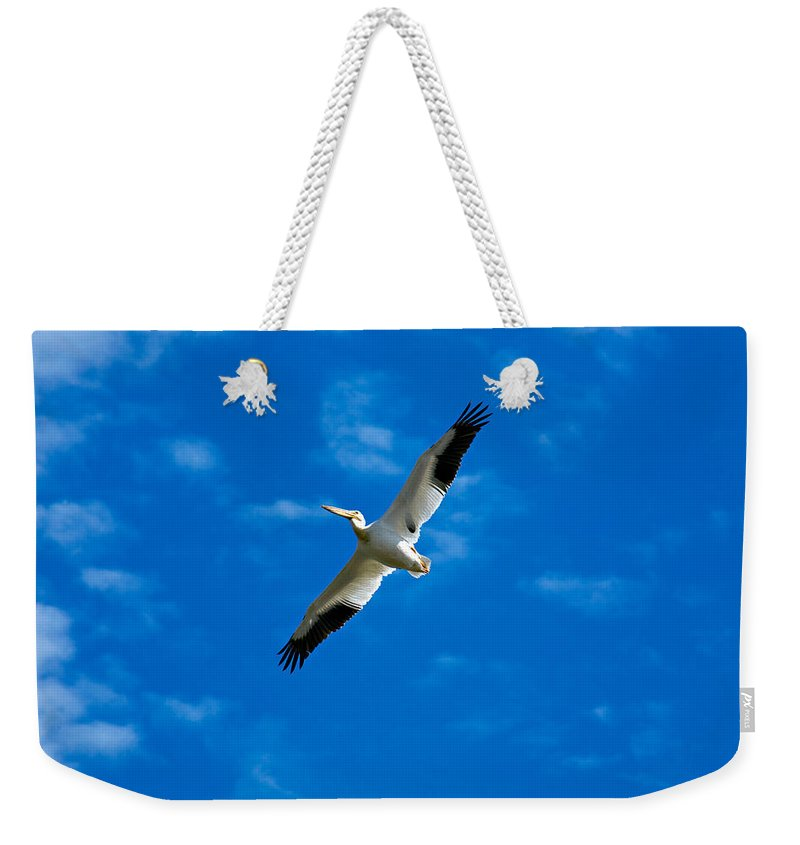 American Weekender Tote Bag featuring the photograph American White Pelican by Marilyn Hunt