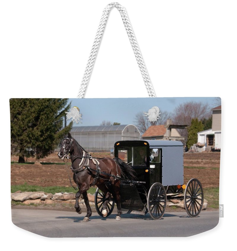 Amish Weekender Tote Bag featuring the photograph Amish Buggy And High Stepper by David Arment