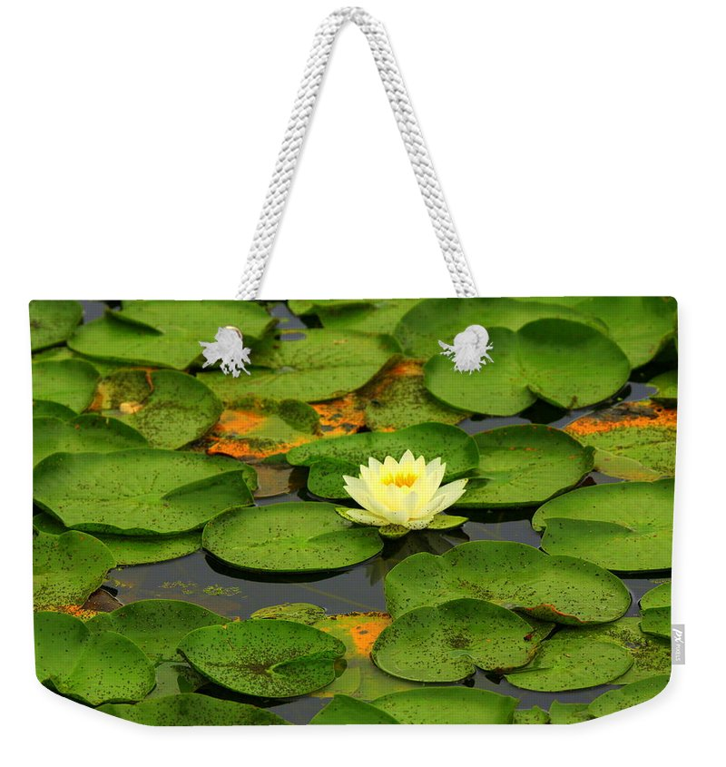 Among The Lily Pads Weekender Tote Bag featuring the photograph Among The Lily Pads by Suzanne DeGeorge