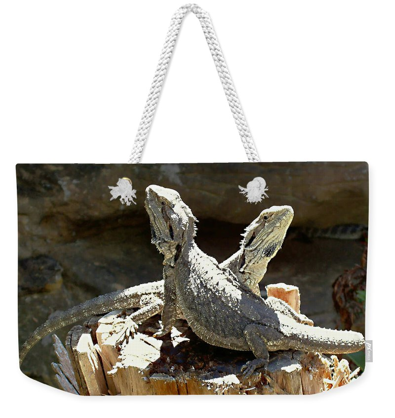 Amphion And Zethus Weekender Tote Bag featuring the photograph Amphion And Zethus by Ellen Henneke