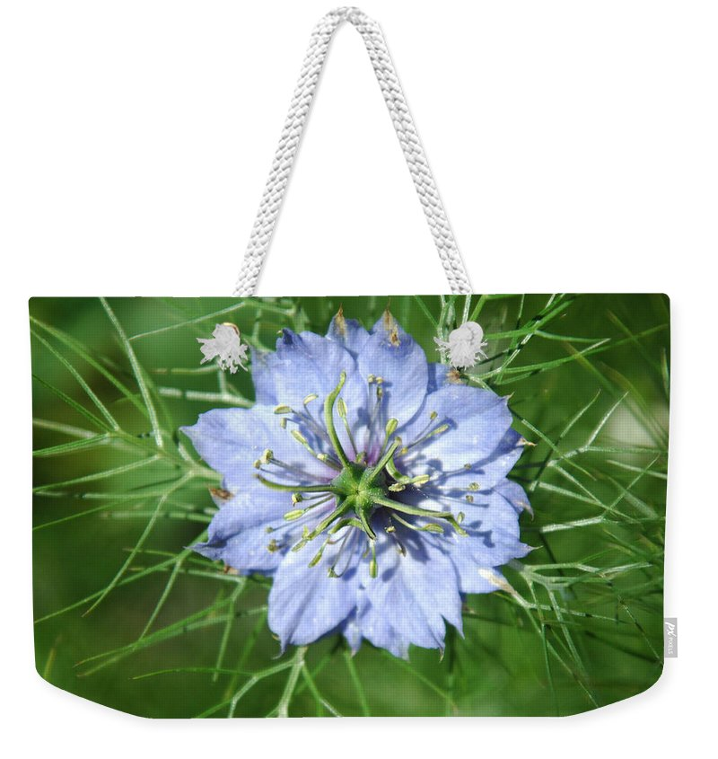 Flower Weekender Tote Bag featuring the photograph An Octopusses Garden by Donna Blackhall