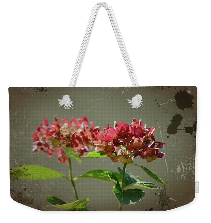 Antique Picture Of Flowers Weekender Tote Bag featuring the photograph An Old Picture by Randy J Heath