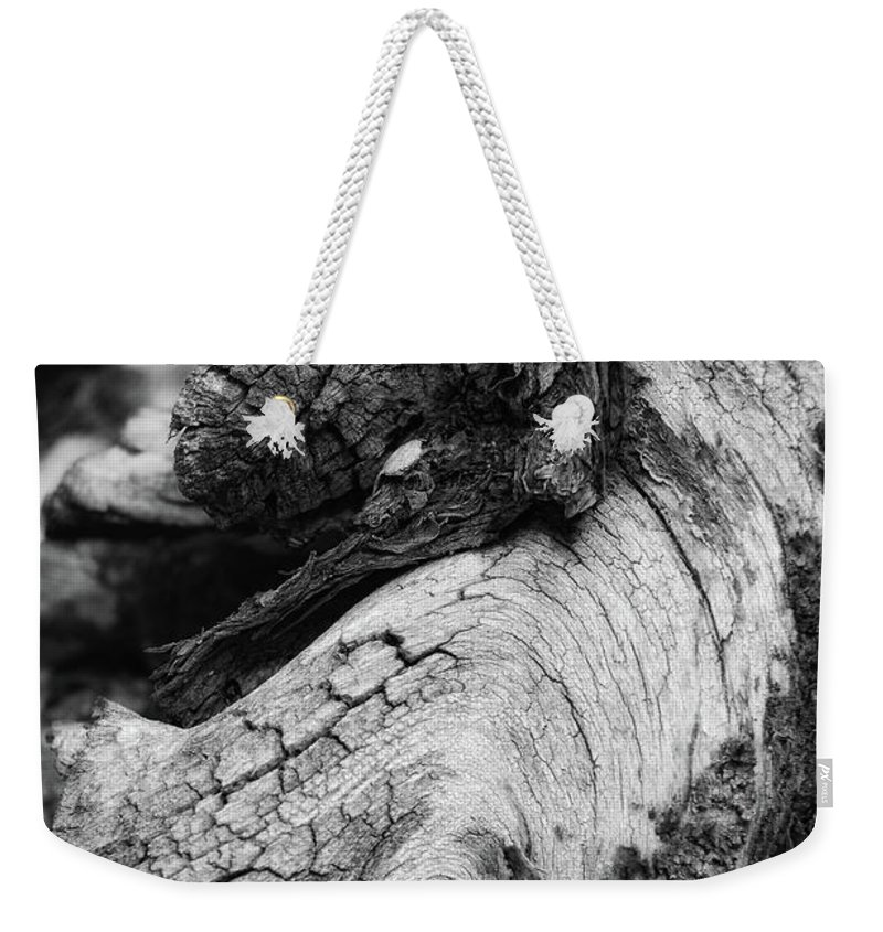 Wooden Horse Weekender Tote Bag featuring the photograph Ancient Knight's Stead by Donna Blackhall