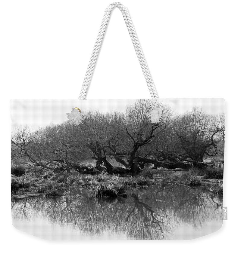 Trees Weekender Tote Bag featuring the photograph Ancient Pollard Trees by Bob Kemp