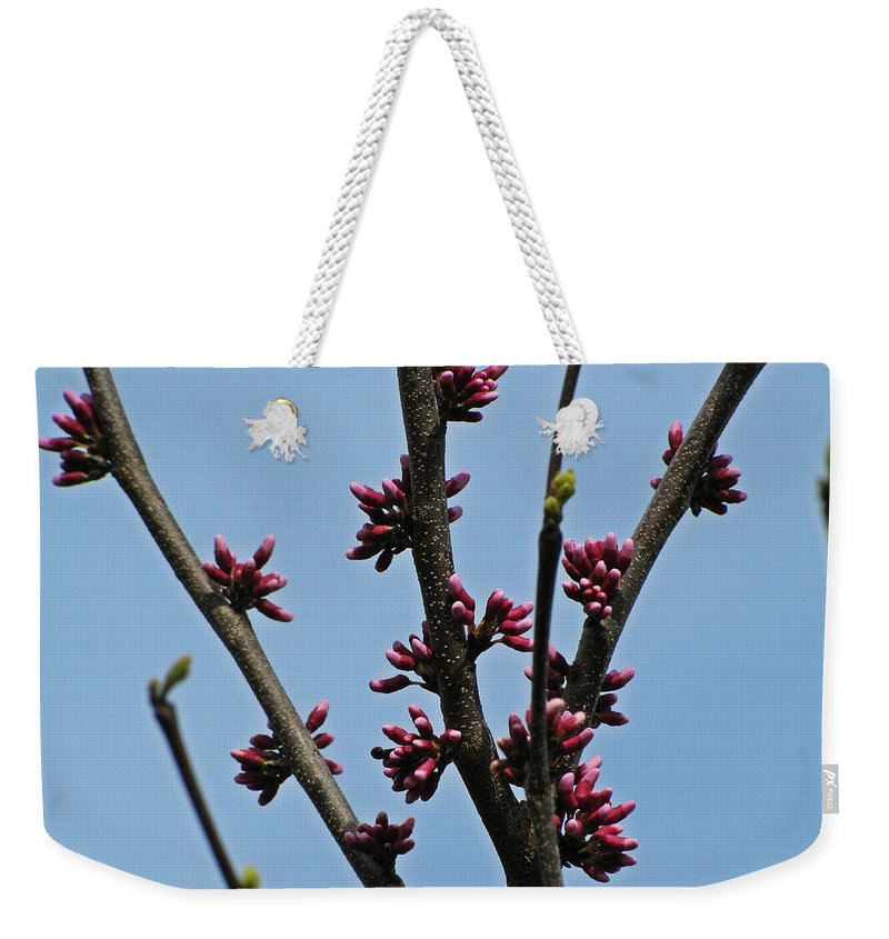 Blooming Weekender Tote Bag featuring the photograph And It Came As Though A Child Burst Into The Room by Jessica Tolemy