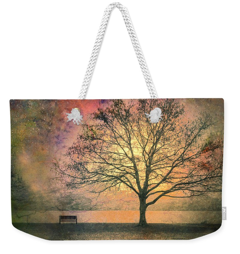 Tree Weekender Tote Bag featuring the photograph And The Morning Is Perfect In All Her Measured Wrinkles by Tara Turner