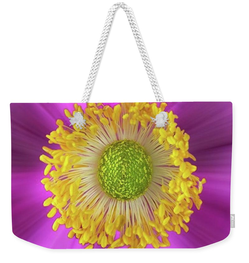 Beautiful Weekender Tote Bag featuring the photograph Anemone Hupehensis 'hadspen by John Edwards