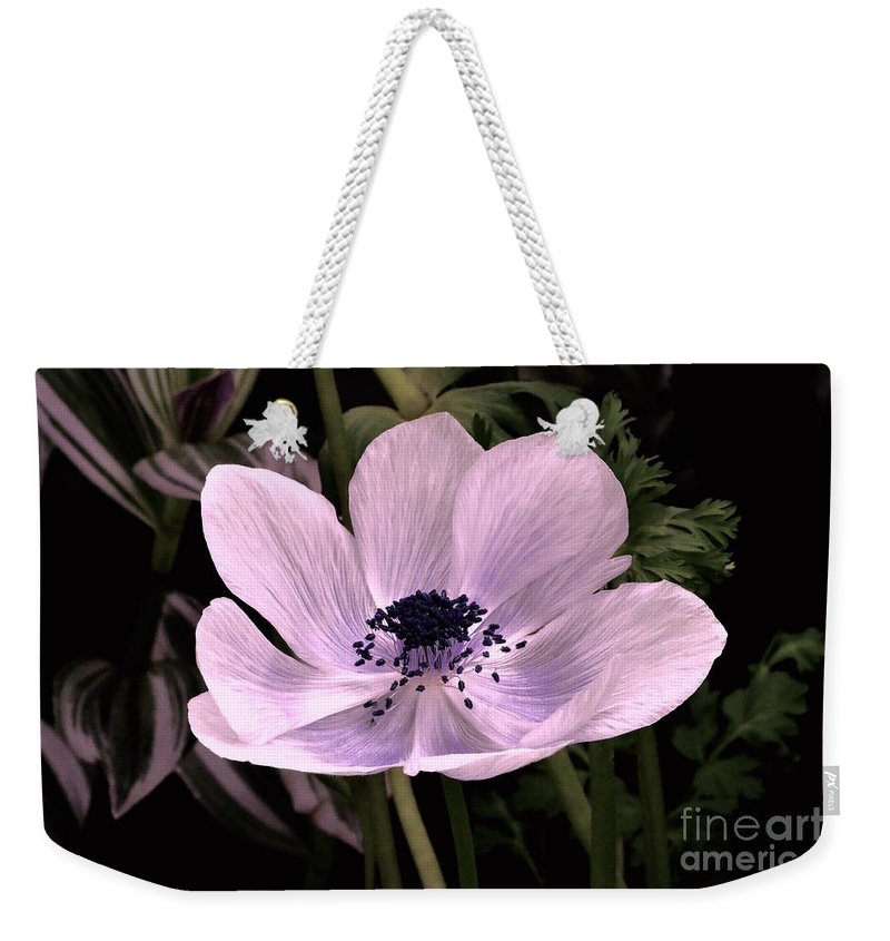 Anemore In Pink Weekender Tote Bag featuring the photograph Anemore In Pink by Jeannie Rhode
