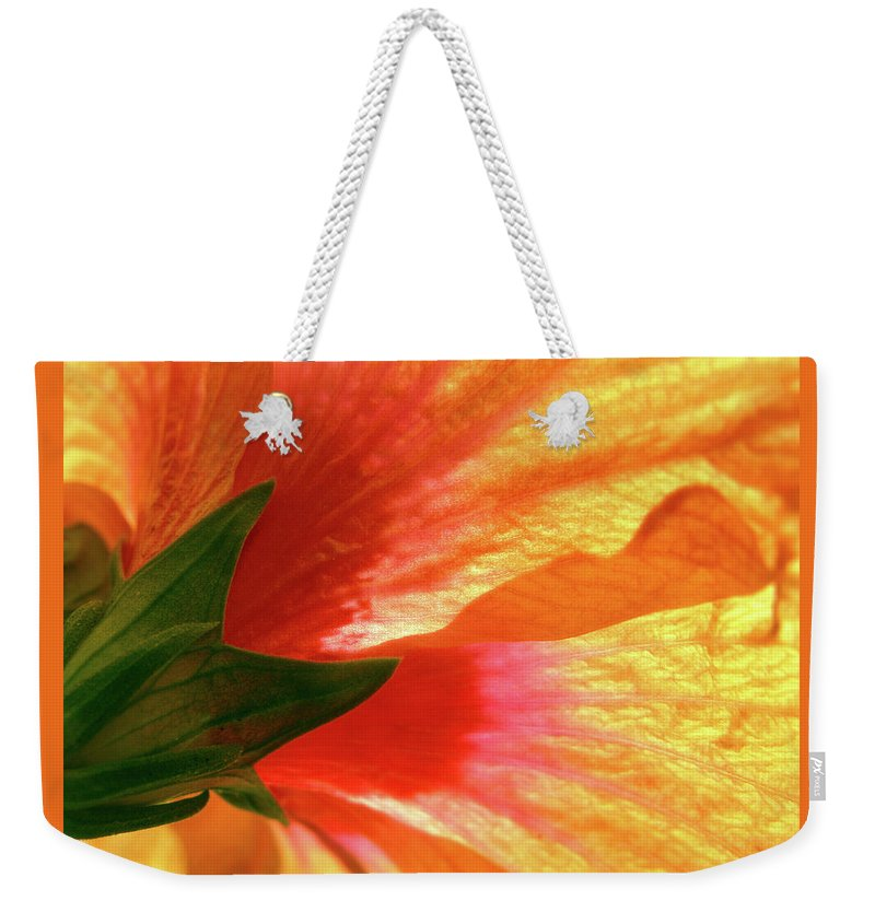Hibiscus Weekender Tote Bag featuring the photograph Angel Brushstrokes by Marie Hicks