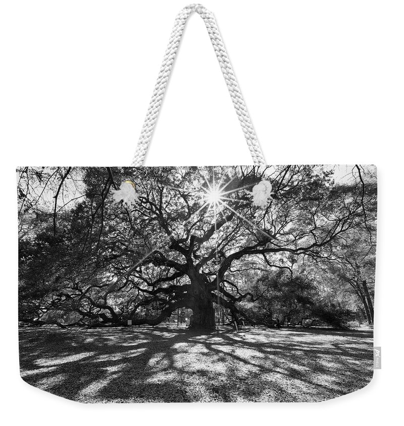 South Carolina Weekender Tote Bag featuring the photograph Angel Oak Starbusrt by Nancy Dunivin