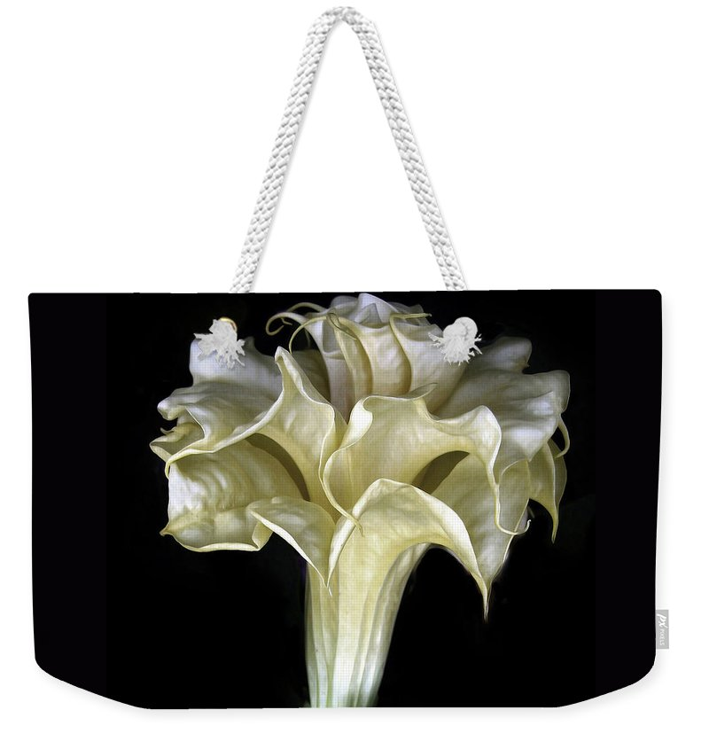 Flower Weekender Tote Bag featuring the photograph Angel Trumpet by Jessica Jenney