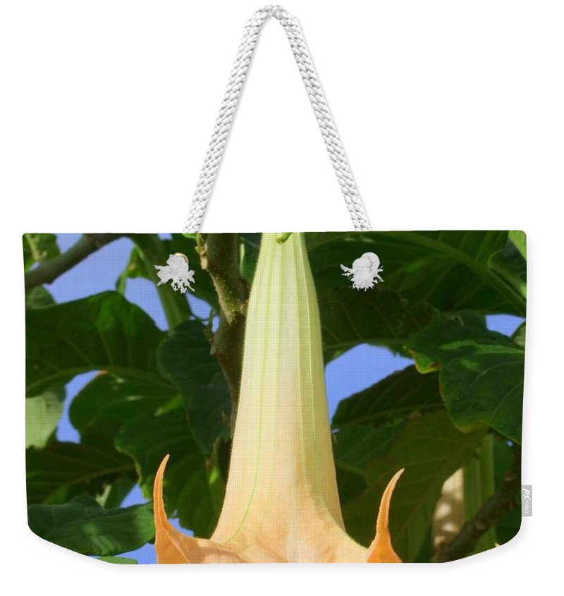 Mary Deal Weekender Tote Bag featuring the photograph Angels Trumpet by Mary Deal
