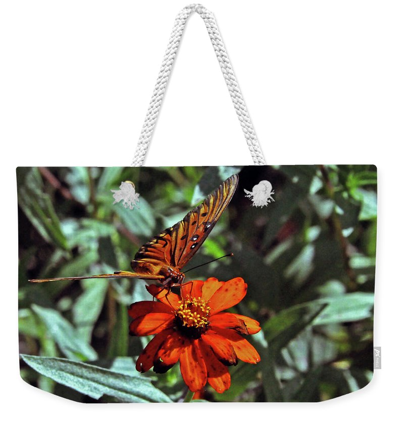 Nature Weekender Tote Bag featuring the photograph Angling For Food by Kay Lovingood