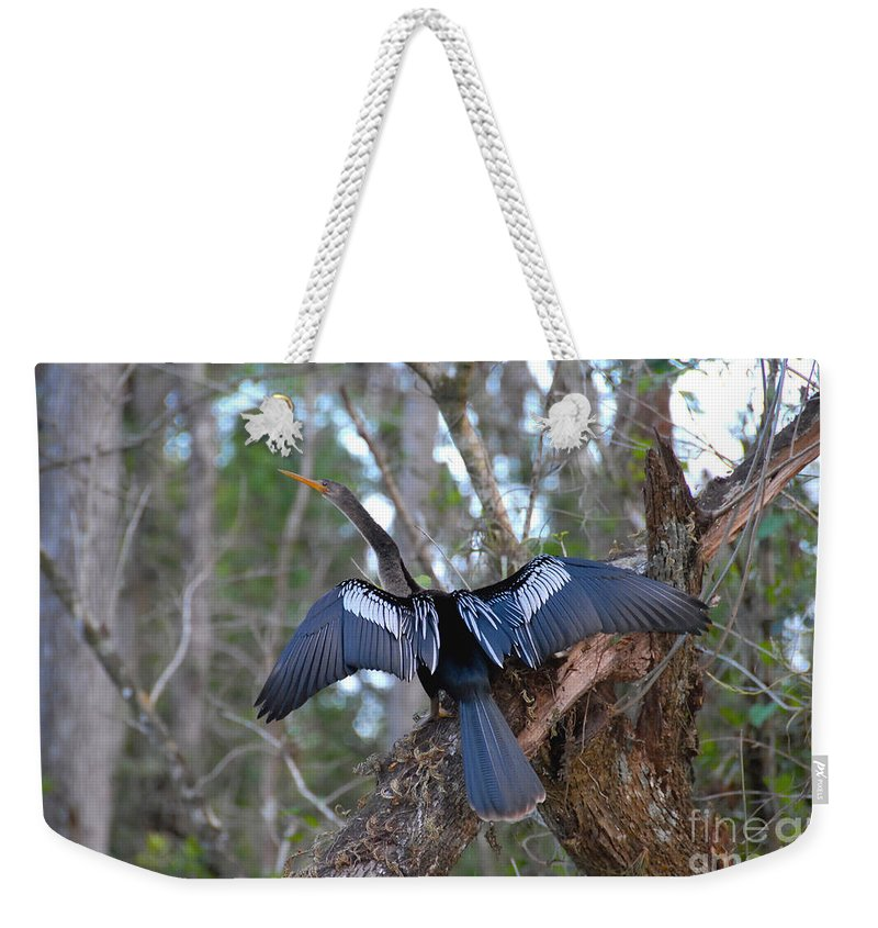 Anhinga Weekender Tote Bag featuring the photograph Anhinga by David Lee Thompson
