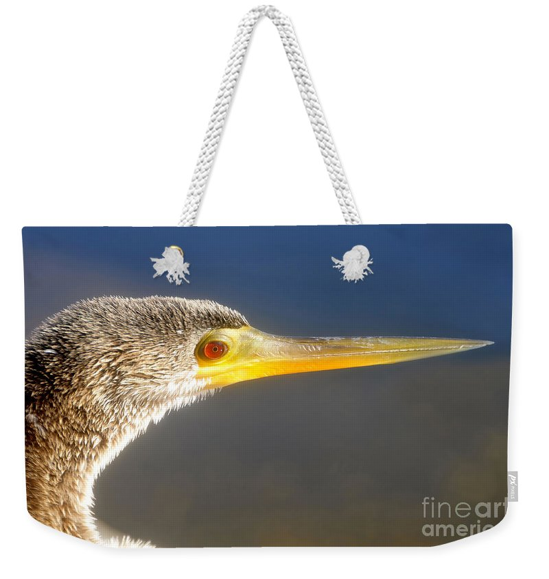 Anhinga Weekender Tote Bag featuring the photograph Anhinga Detail by David Lee Thompson