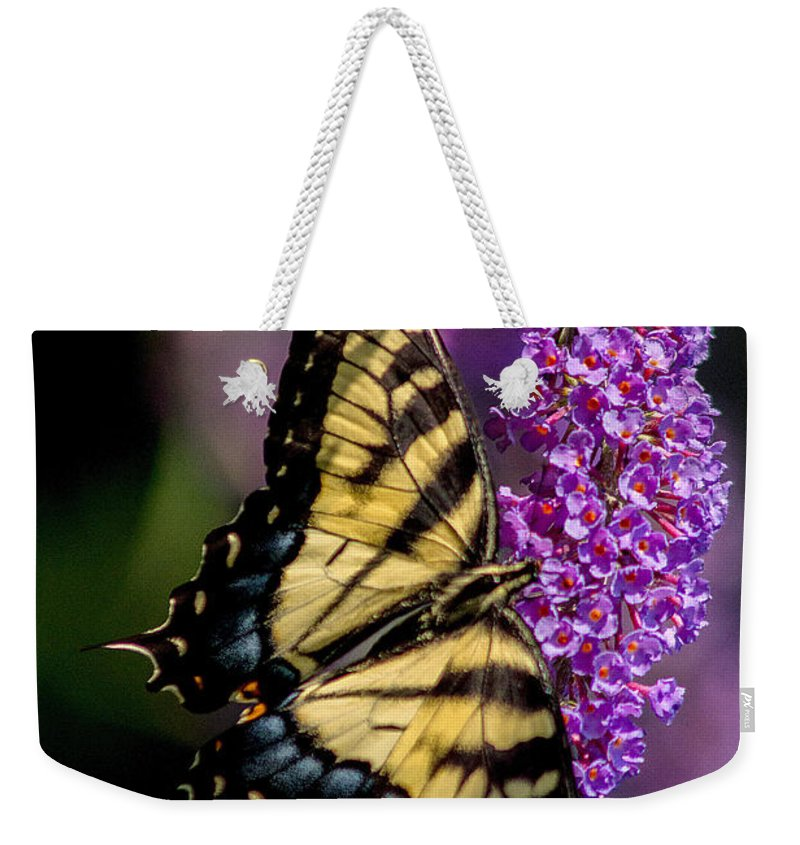 Anise Swallowtail Weekender Tote Bag featuring the photograph Anise Swallowtail by J Allen