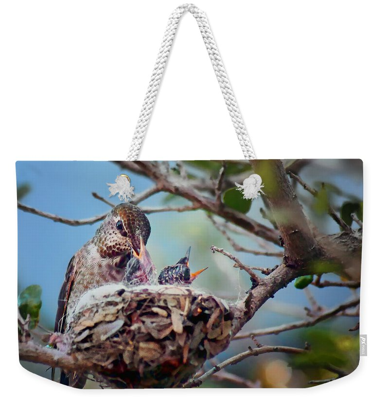 Annas Hummingbirds Weekender Tote Bag featuring the photograph Anna's Hummingbirds by Nikolyn McDonald