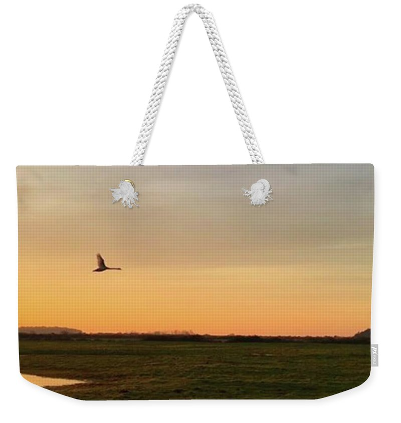 Natureonly Weekender Tote Bag featuring the photograph Another Iphone Shot Of The Swan Flying by John Edwards