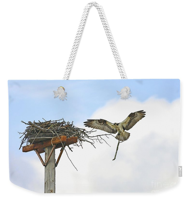 Osprey Weekender Tote Bag featuring the photograph Another Twig For The Nest by Deborah Benoit
