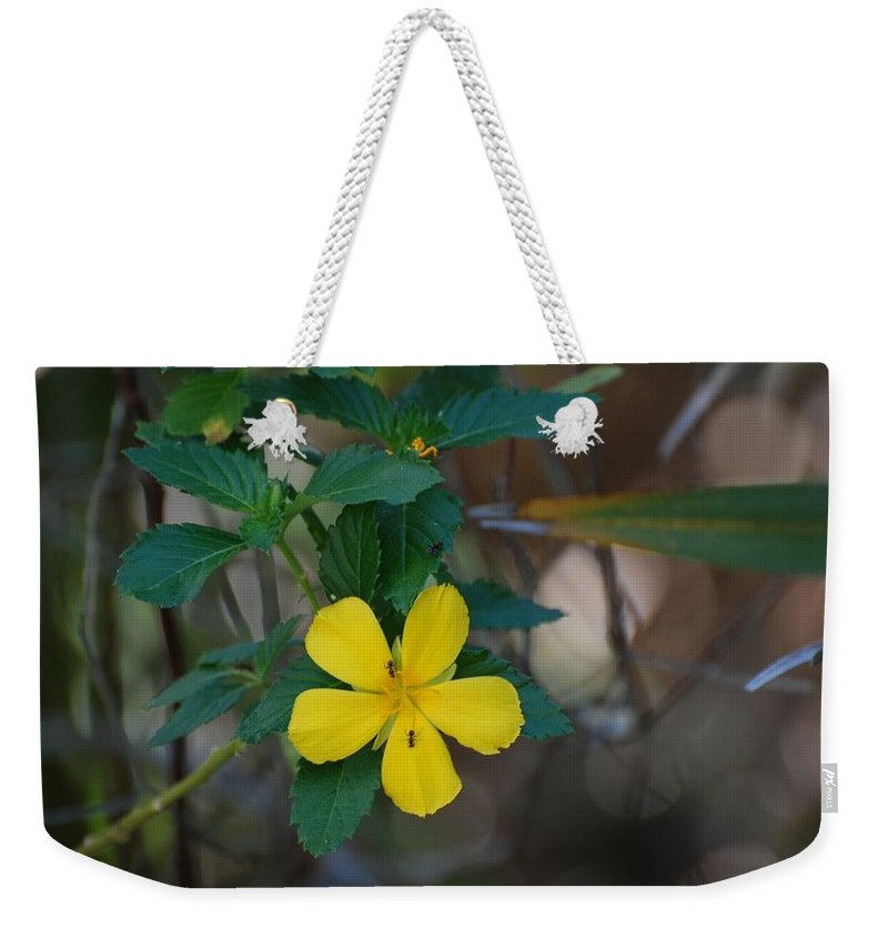 Macro Weekender Tote Bag featuring the photograph Ant Flowers by Rob Hans