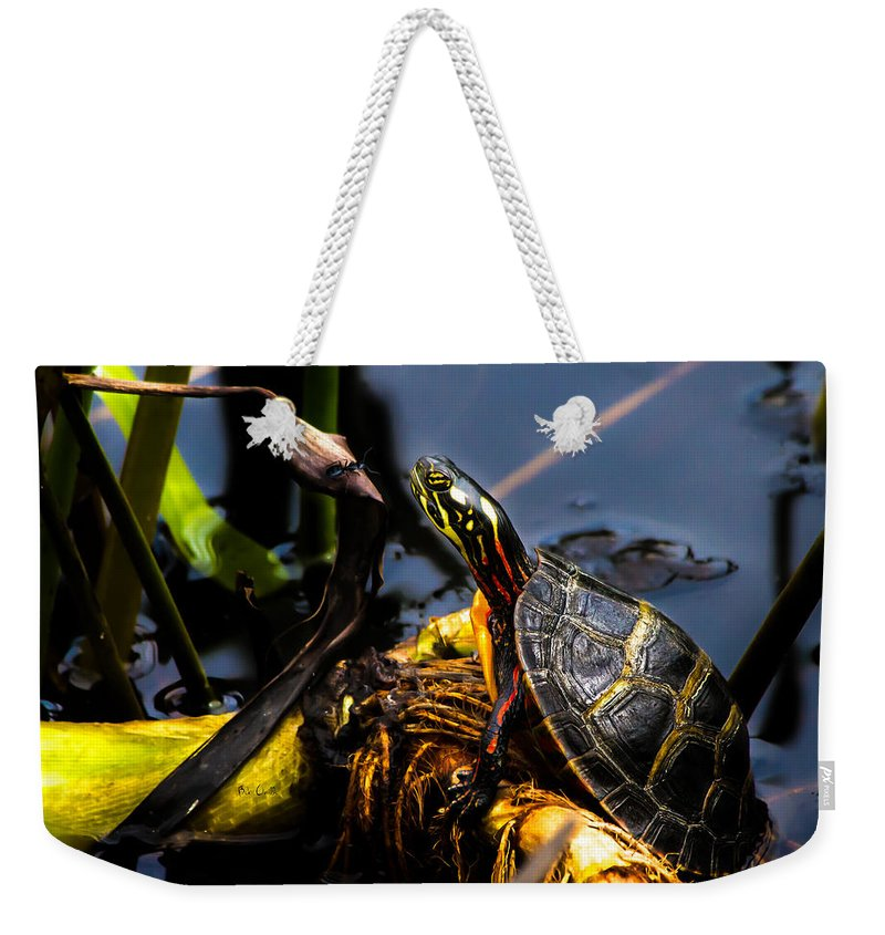 Turtles Weekender Tote Bag featuring the photograph Ant Meets Turtle by Bob Orsillo