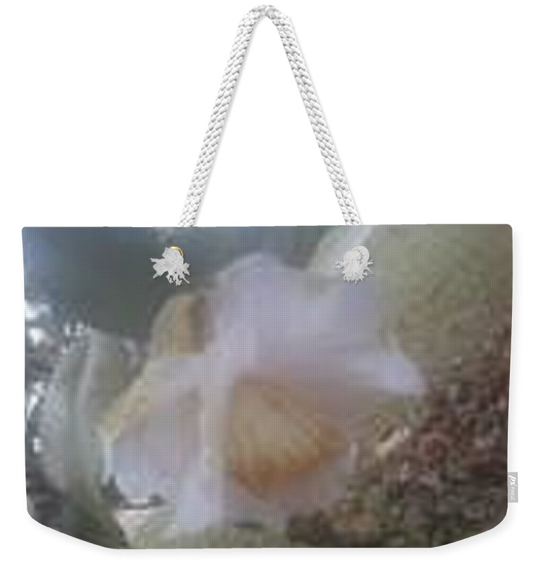 White Flower Weekender Tote Bag featuring the photograph Antique White II by R Chambers