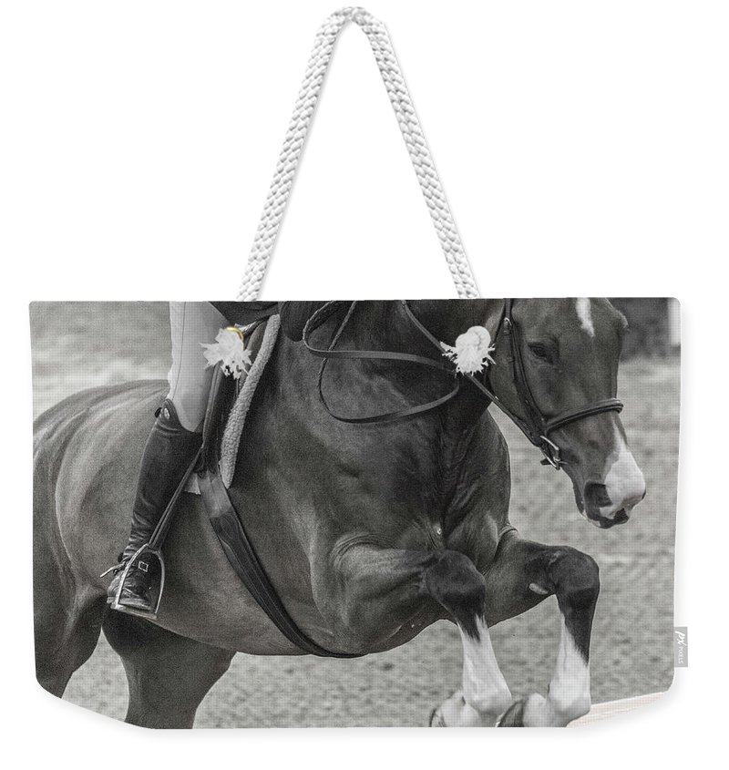 Horse Weekender Tote Bag featuring the photograph Anything For You by Betsy Knapp