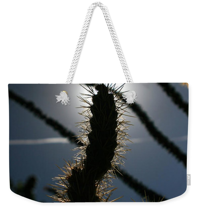 Cactus Weekender Tote Bag featuring the photograph Anza Borrego Cholla Sillouette by Chris Brannen