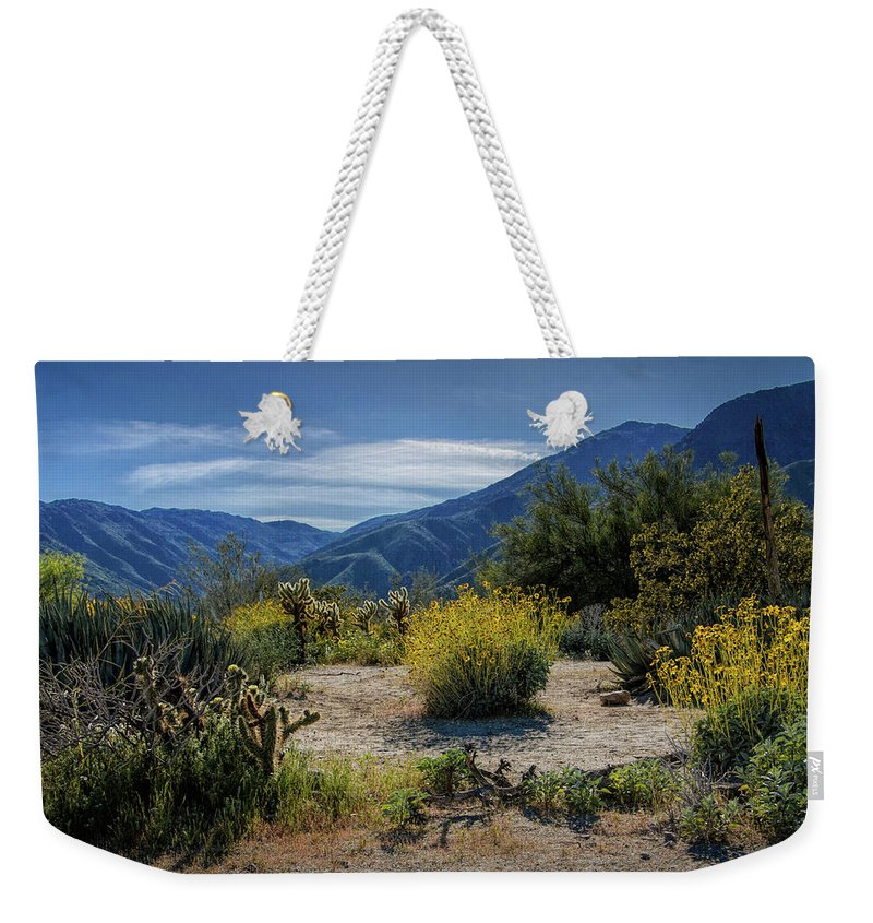 Art Weekender Tote Bag featuring the photograph Anza-borrego Desert State Park Desert Flowers by Randall Nyhof
