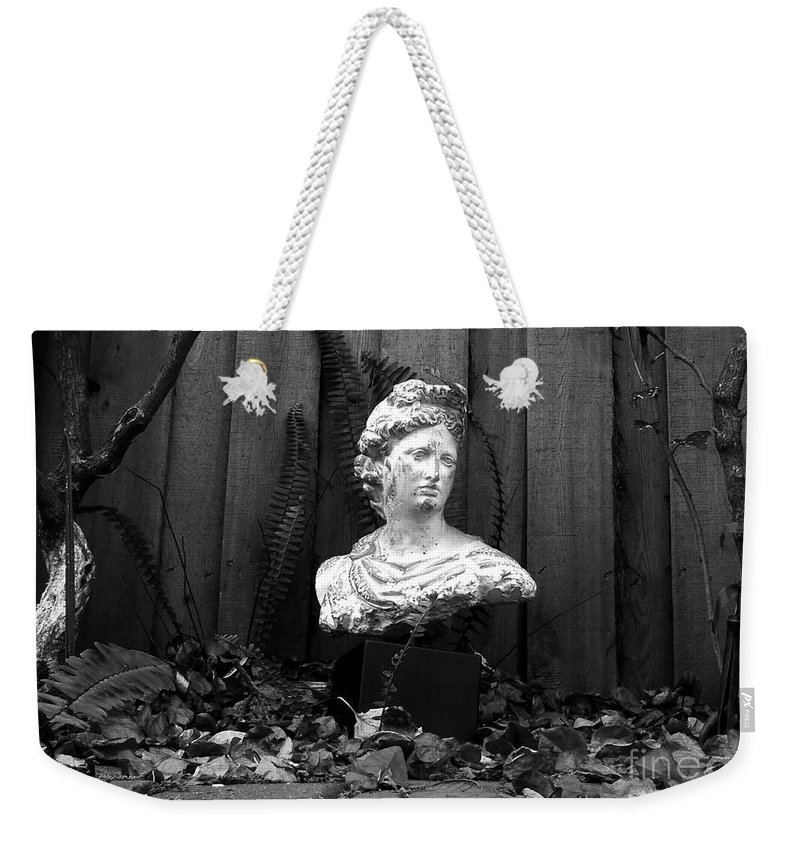Apollo Weekender Tote Bag featuring the photograph Apollo In The Backyard by David Lee Thompson