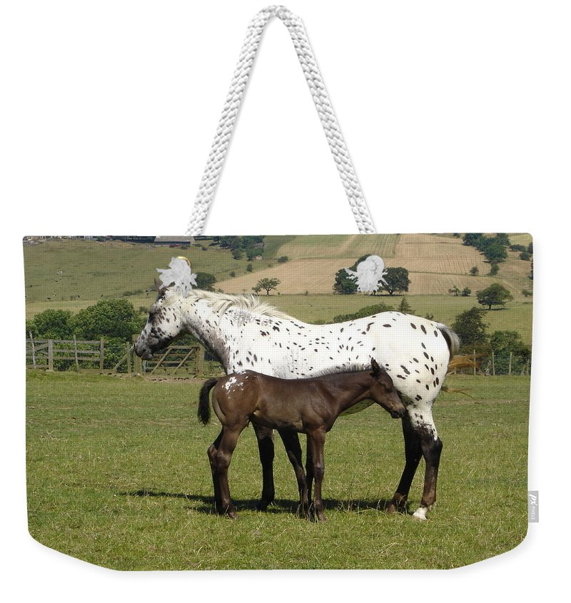 Horse Weekender Tote Bag featuring the photograph Appaloosa Mare And Foal by Susan Baker