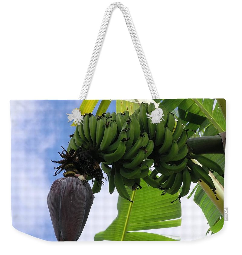 Green Weekender Tote Bag featuring the photograph Apple Bananas by Mary Deal