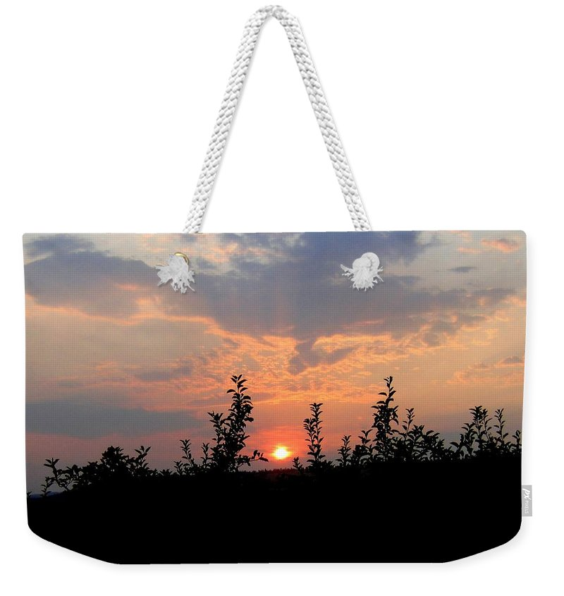 Sunset Weekender Tote Bag featuring the photograph Apple Orchard Silhouette by Will Borden