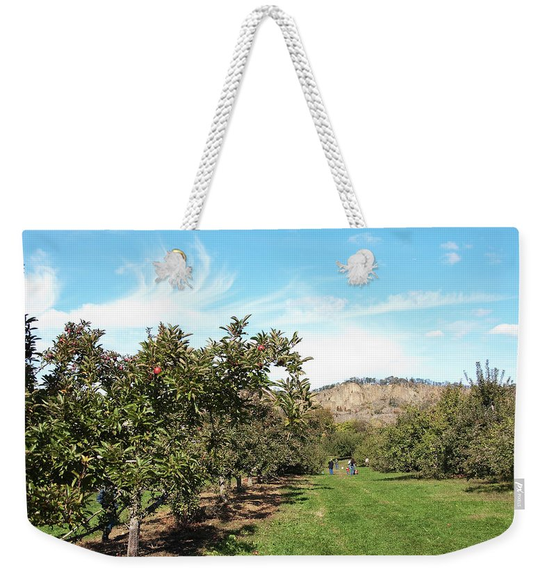 Landscape Weekender Tote Bag featuring the photograph Apple Picking by Jose Rojas